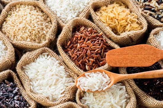 Différentes variétés de riz
