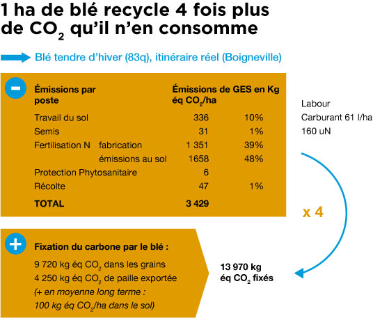 infographie_ble-recycle