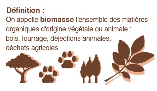 biomasse-01